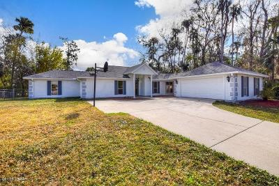 New Smyrna Beach Single Family Home For Sale: 2224 Juanita Drive