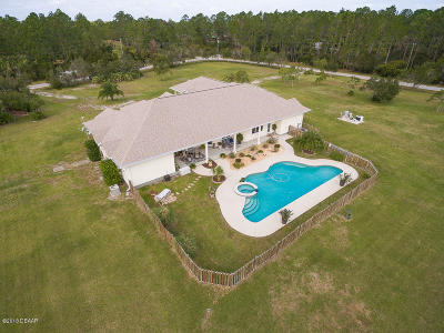New Smyrna Beach Single Family Home For Sale: 154 El Pino Drive