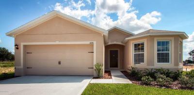 Port Orange Single Family Home For Sale: 5325 Royal Plantation Boulevard