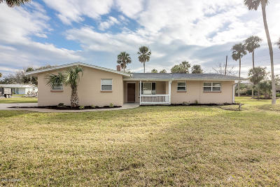 Ormond Beach Single Family Home For Sale: 72 Sunny Shore Drive
