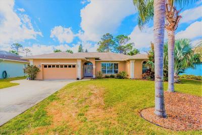 Volusia County Single Family Home For Sale: 2756 Turnbull Estates Drive