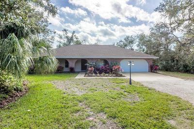 Port Orange Single Family Home For Sale: 720 Pringle Road