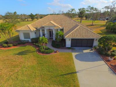 Daytona Beach Single Family Home For Sale: 929 Sea Duck Drive