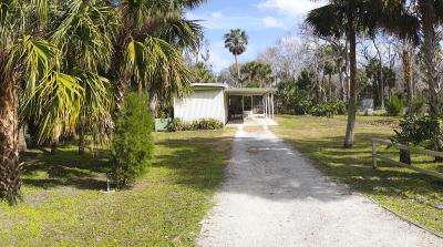 New Smyrna Beach Single Family Home For Sale: 1351 Elizabeth Street