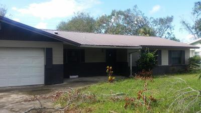 Volusia County Single Family Home For Sale: 211 Devon Street