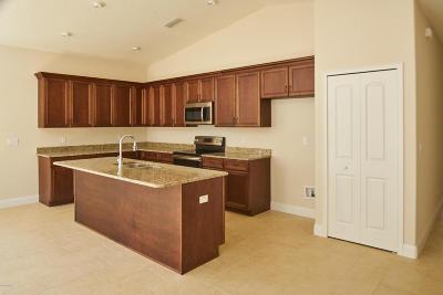 Ormond Beach Single Family Home For Sale: 205 Sunrise Cove Circle
