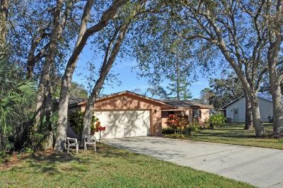New Smyrna Beach Single Family Home For Sale: 2551 Westwood Avenue