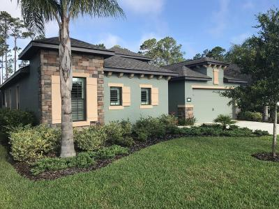 Ormond Beach Single Family Home For Sale: 641 Elk River Drive