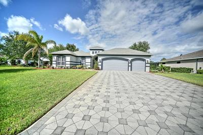 Ormond Beach Single Family Home For Sale: 46 Rocky Bluff Drive