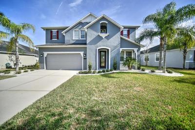 Daytona Beach Single Family Home For Sale: 148 Boysenberry Lane