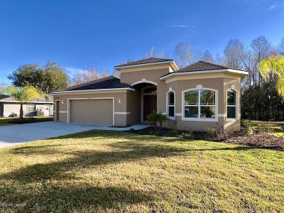 Spruce Creek Fly In Single Family Home For Sale: 3289 Spruce Creek Glen