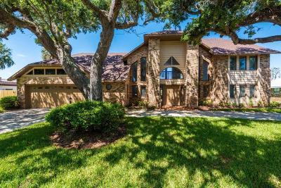 Ormond Beach Single Family Home For Sale: 3540 John Anderson Drive