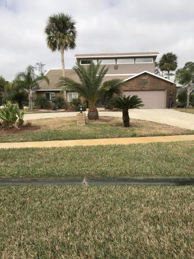 Daytona Beach Single Family Home For Sale: 152 Mallard Lane
