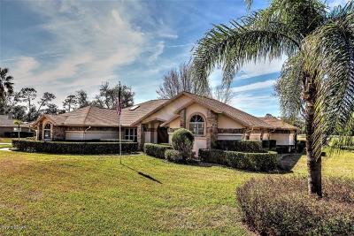 Ormond Beach Single Family Home For Sale: 34 Magnolia Drive