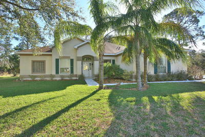 Palm Coast Single Family Home For Sale: 111 Whispering Pine Drive