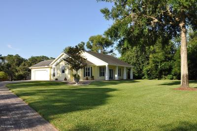New Smyrna Beach Single Family Home For Sale: 1071 Sugar Mill Drive