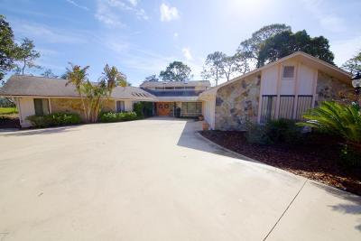 New Smyrna Beach Single Family Home For Sale: 1086 Button Bush Place
