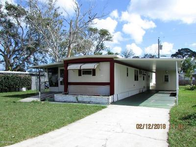 Port Orange Single Family Home For Sale: 5221 Frederick Avenue