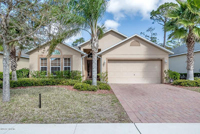 Port Orange Single Family Home For Sale: 3925 Sunset Cove Drive