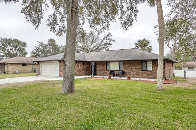 Port Orange Single Family Home For Sale: 3646 Socha Way