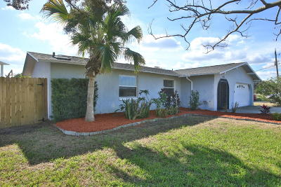 Ormond Beach Single Family Home For Sale: 1022 Shockney Drive