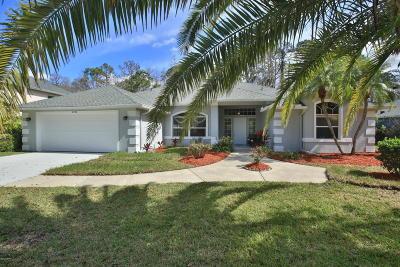 Port Orange Single Family Home For Sale: 6394 Nika Court