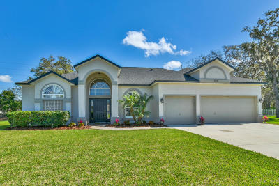 Port Orange Single Family Home For Sale: 510 Sun Lake Drive
