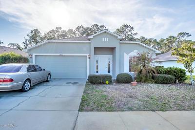 Daytona Beach Single Family Home For Sale: 295 Dahoon Holly Drive
