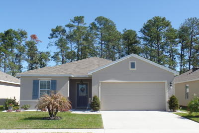 New Smyrna Beach Single Family Home For Sale: 517 White Coral Lane