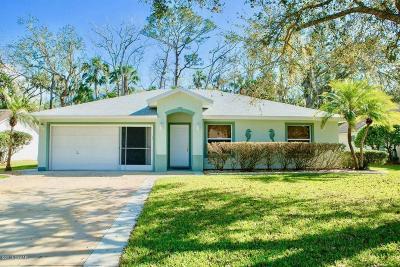 Ormond Beach Single Family Home For Sale: 20 Parkview Lane