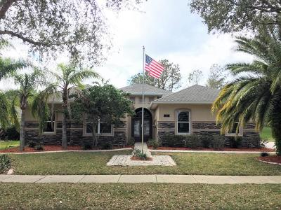 Volusia County Single Family Home For Sale: 4217 Mayfair Lane