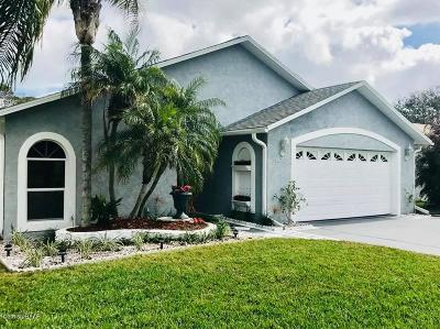 Port Orange Single Family Home For Sale: 5426 Landis Avenue