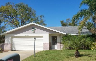 Port Orange Single Family Home For Sale: 311 Jane Ann Street