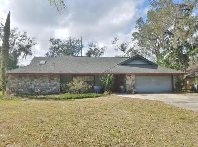 Port Orange Single Family Home For Sale: 408 Oak River Drive