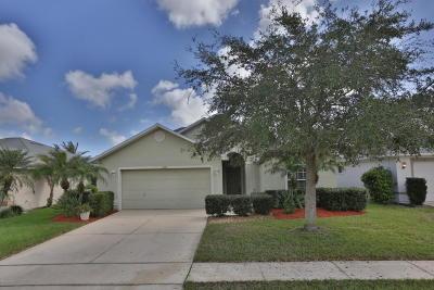 Port Orange Single Family Home For Sale: 6823 Amici Court