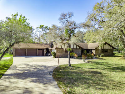 Ormond Beach Single Family Home For Sale: 279 Riverbend Road