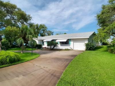 Volusia County Single Family Home For Sale: 460 S Halifax Drive
