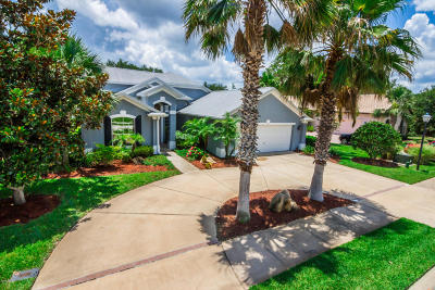 Palm Coast Single Family Home For Sale: 10 Emerald Lake Court