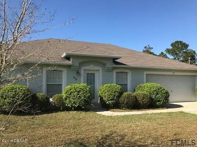 Palm Coast Single Family Home For Sale: 23 Pershing Lane