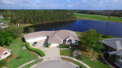 Port Orange Single Family Home For Sale: 6356 Fairway Cove Drive