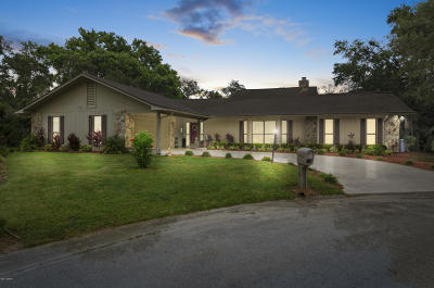 New Smyrna Beach Single Family Home For Sale: 515 Boxwood Lane