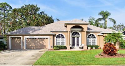 Port Orange Single Family Home For Sale: 6059 Sabal Creek Boulevard