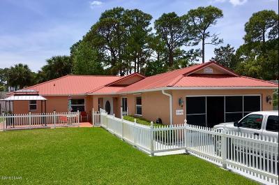 Port Orange Single Family Home For Sale: 5463 Landis