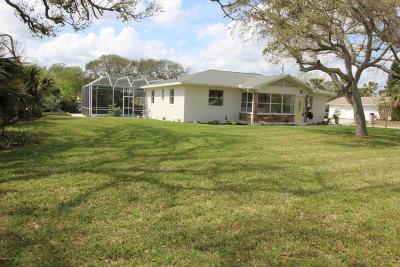 Daytona Beach Single Family Home For Sale: 2124 S Peninsula Drive