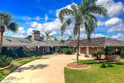 Flagler County, Volusia County Single Family Home For Sale: 4820 S Peninsula Drive