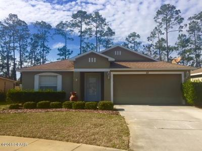 Volusia County Single Family Home For Sale: 117 Rain Lily Circle