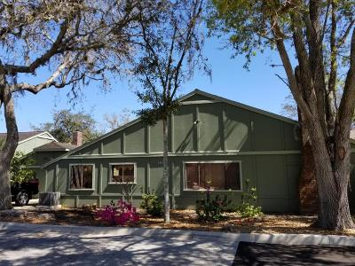 Ormond Beach Single Family Home For Sale: 111 Timberline Trail