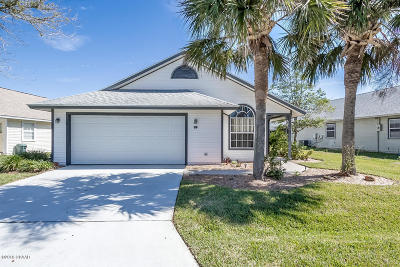 Palm Coast Single Family Home For Sale: 39 Andover Drive