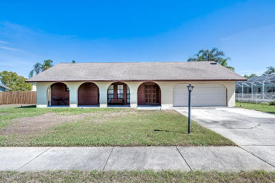 Port Orange Single Family Home For Sale: 225 Pinerock Place