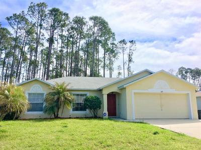 Palm Coast Single Family Home For Sale: 275 Beachway Drive